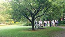Kiyoshumi Garden